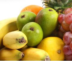 fruitcat